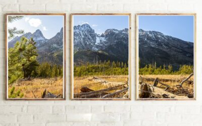 LENS OF NATURE – NEW SERIES BY GEROME BONNER